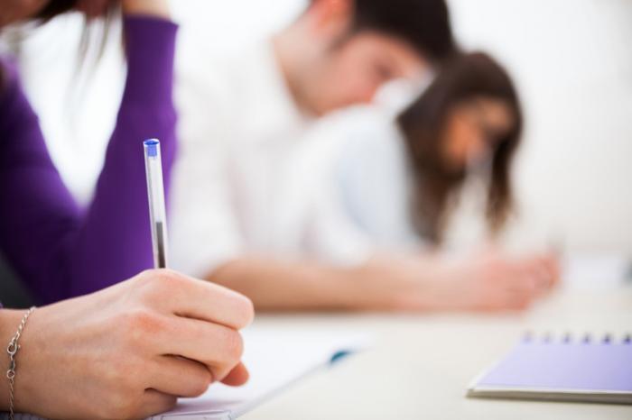 Inscrições poderão ser feitas até o dia 04 de fevereiro. Processo Seletivo oferece vagas nas áreas da Saúde, Educação e Assistência Social.